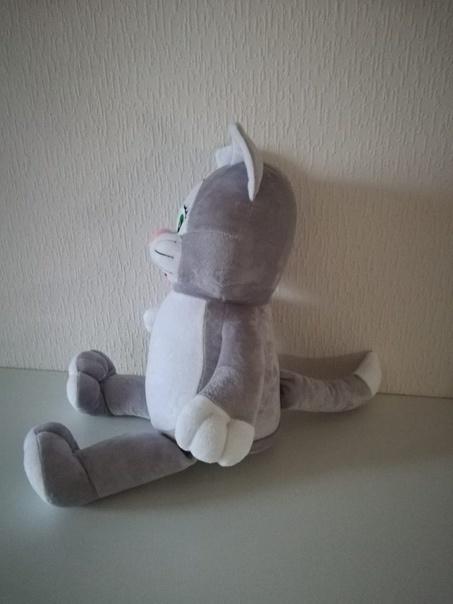 кот серый2